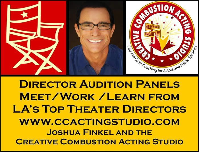 Joshua Finkel's Director Audition Panels - Alisa Taylor, Bi-Coastal Theatrical Agent Brady Brannon and Rich Agency (BBR)
